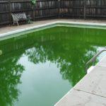 Piscine avec eau verte