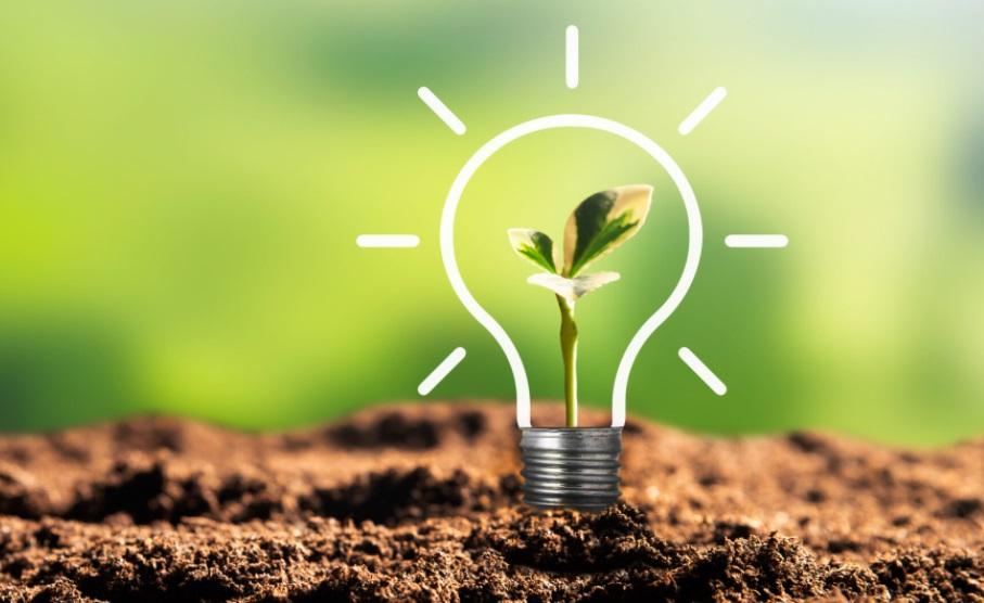 terre plante ampoule énergie
